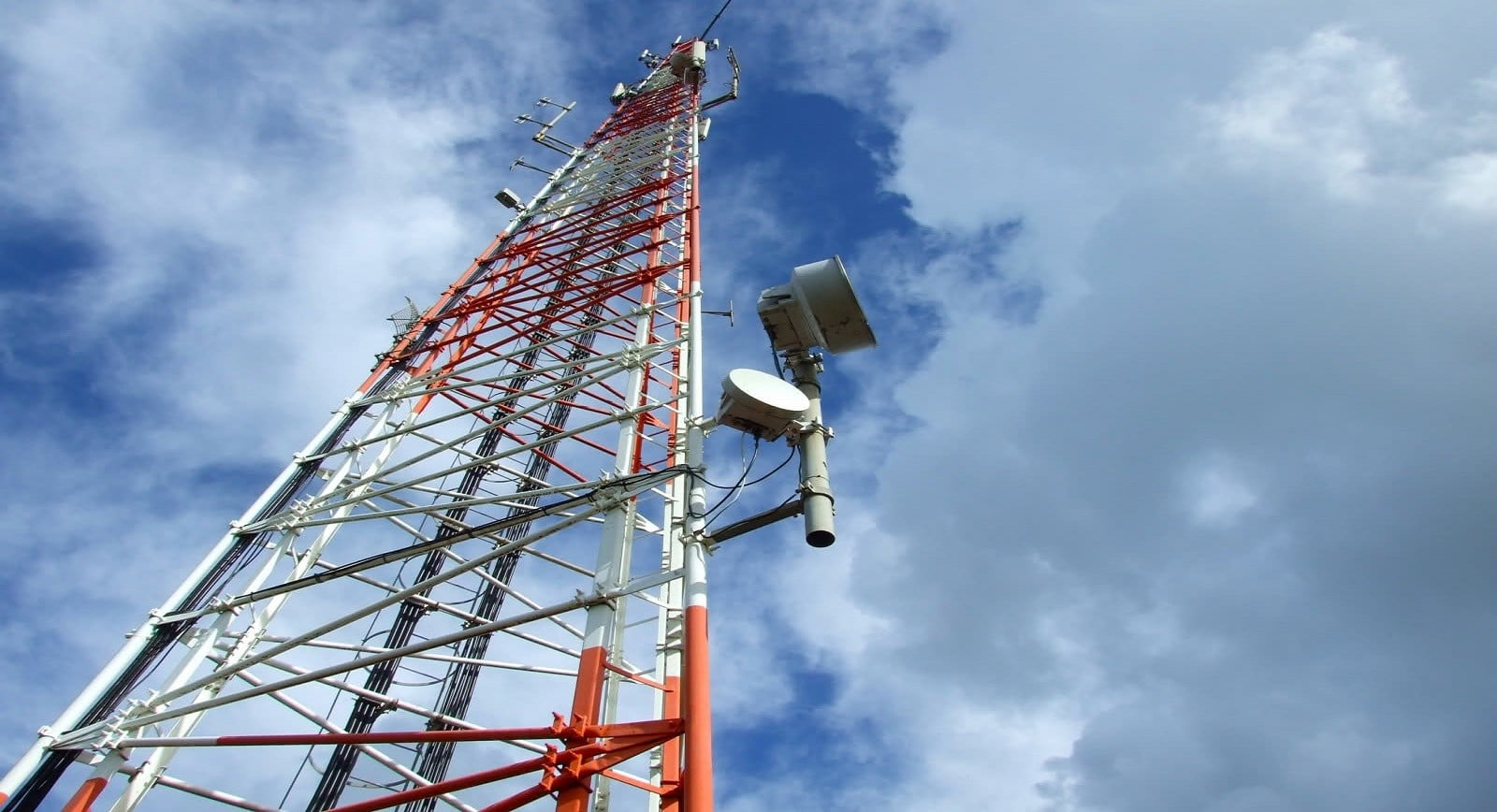 m a in the telecommunication sector