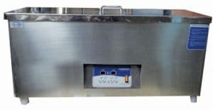 LeelaSonic-100