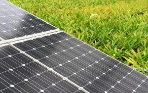ReNew Power, solar firm, solar capacity, Telengana, india